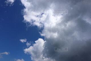 自然,空,屋外,雲,青空,くもり