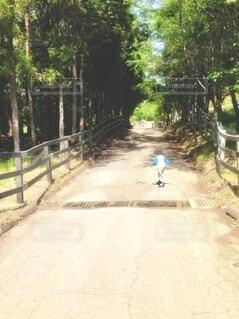 元気にお散歩する子供の写真・画像素材[4212303]