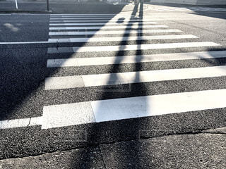 誰もいない朝の横断歩道の写真・画像素材[4418699]