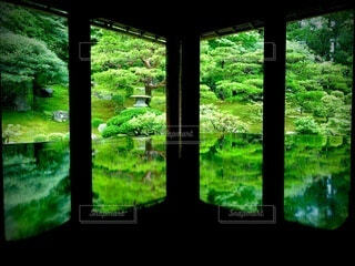 新緑の景色の写真・画像素材[4113465]
