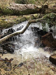 自然,風景,冬,雪,屋外,きれい,川,水面,雪景色,景色,滝,草,樹木,岩,雪化粧,つらら,幻想,草木,氷柱,日本の滝,単なる山,身近な美