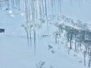 一面雪景色の写真・画像素材[4150136]