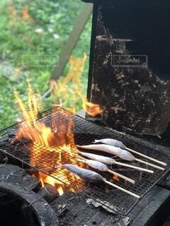 魚,屋外,グリル,炎,火,釣り,料理,無人島,長崎,串焼き