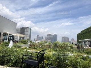 空,公園,建物,屋外,雲,樹木,高層ビル,ダウンタウン,草木