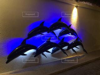 風景,海,魚,イルカ,青,幻想的,水族館,暗い,可愛い,オブジェ,青い