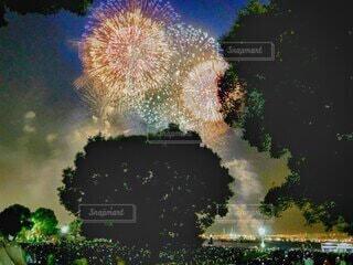 風景,夏,屋外,きれい,綺麗,花火,暑い,美しい,樹木,打ち上げ花火,最高,景観,8月,風物,夏だ