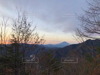 自然,風景,空,富士山,森林,屋外,雲,綺麗,山,景色,樹木,山梨県,山脈,景観,山塊