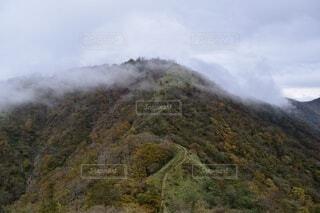 自然,風景,空,秋,森林,屋外,雲,霧,山,景色,丘,樹木,高原,景観,眺め,丹沢