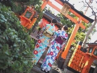 屋外,京都,樹木,着物,和服,草木