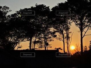 自然,風景,空,屋外,太陽,雲,夕暮れ,シルエット,樹木,草木