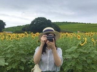 空,花,カメラ,屋外,緑,ひまわり,黄色,景色,女の子,草,人物,麦わら帽子,人,ひまわり畑,草木
