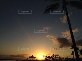 空,屋外,太陽,ビーチ,雲,夕焼け,夕暮れ,水平線,樹木,ヤシの木,beach,sunset,日の入り,サンセット,グラデーション,草木,パーム