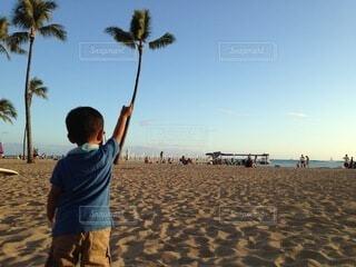 子ども,海,空,キッズ,屋外,砂,ビーチ,青,砂浜,水面,海岸,子供,人物,人,地面,ヤシの木,kids,快晴,グラデーション,パーム