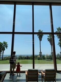 空,建物,窓,樹木