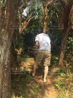 男性,風景,木,屋外,草,樹木,人物,人,ハイキング,ショートパンツ,草木,履物,パス