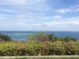 自然,空,屋外,湖,緑,ビーチ,雲,水面,樹木,草木
