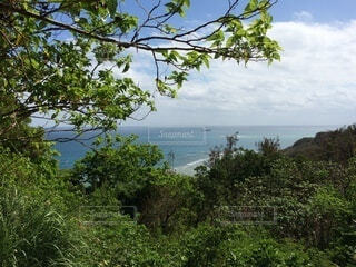 風景,空,屋外,湖,ビーチ,雲,水面,樹木,草木