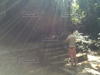 風景,屋外,樹木,人物,人,地面,ハイキング,履物