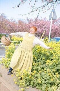菜の花畑でピクニックの写真・画像素材[4196959]