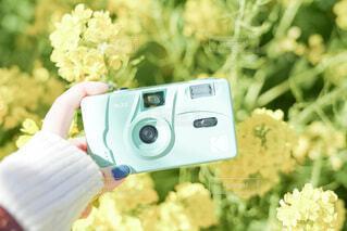 菜の花とフィルムカメラの写真・画像素材[4196978]