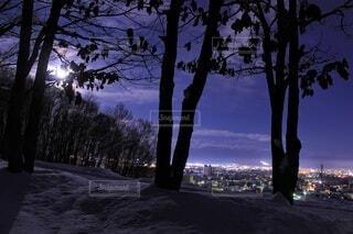 風景,空,冬,夜,夜景,雪,屋外,雲,樹木,12月,旭川,街の灯,春光台公園