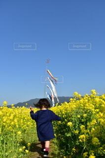 花を持っている人の写真・画像素材[4298304]