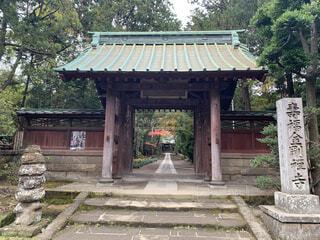 建物,屋外,神社,樹木,地面,寺,仏教,ポーチ,草木