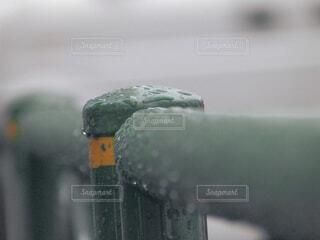 冬の寒さの写真・画像素材[4123321]