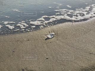 自然,海,屋外,ビーチ,水面,海岸,地面