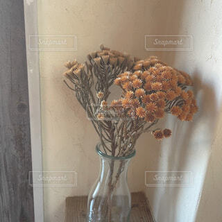 花,屋内,花瓶,壁