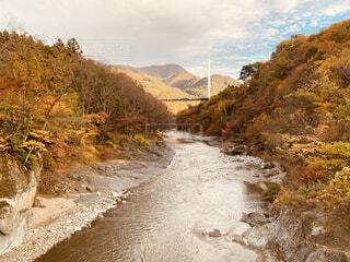 自然,風景,秋,温泉,紅葉,屋外,雲,綺麗,川,水面,山,樹木,旅行,キャンプ,谷,草木,みなかみ