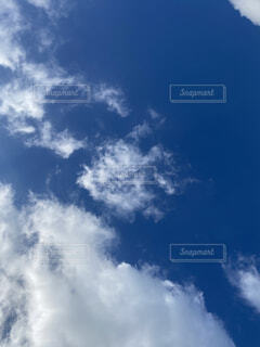 自然,空,魚,屋外,雲,青,飛行機,昼間,くもり,高い,日中