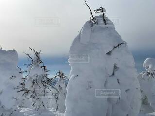 自然,空,冬,木,雪,屋外,芸術,雪だるま,スキー,風,スノボ,ゲレンデ,スキー場,スノーマン,樹氷,東北,蔵王,1月,2月,スノーモンスター,冬の東北