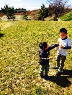 子ども,風景,空,公園,屋外,景色,草,人物,人,赤ちゃん,幼児,少年,若い,草木,少し,たんぽぽ 冬 仲良し 兄弟