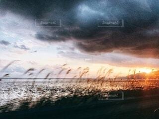 風景,空,夕日,屋外,雲,夕暮れ,ススキ,スピード