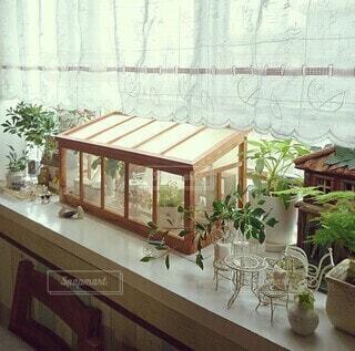 屋内,花瓶,窓,家,植木鉢,温室,観葉植物,草木,ドウダンツツジ,カフェカーテン,ミニチュア雑貨,出窓インテリア,出窓ディスプレイ