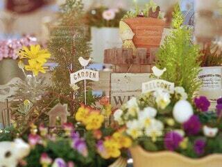 小さな春の写真・画像素材[4166769]