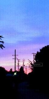 空,屋外,雲,青,夕焼け,夕暮れ,紫,街,電柱,黄昏,グラデーション,電信柱,草木