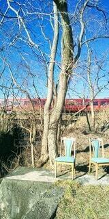 空,屋外,電車,青,椅子,樹木,鉄道,イス