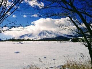 雪の浅間山の写真・画像素材[4169010]