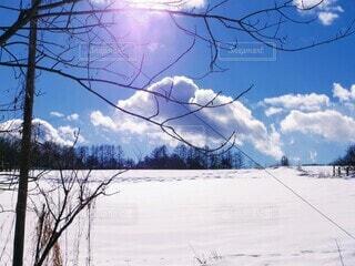 青空の雪原の写真・画像素材[4169009]