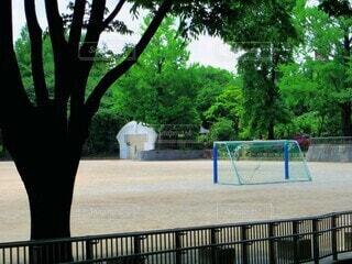 公園,屋外,樹木,サッカー,遊び場,グラウンド,ゴール