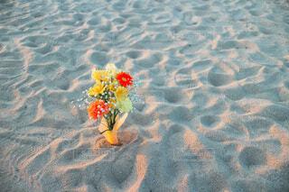 自然,風景,海,花,ビーチ,夕暮れ,ブーケ,夕陽