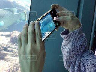 女性,魚,綺麗,手,水族館,時計,スマホ,人物,人,画面,友達,携帯電話