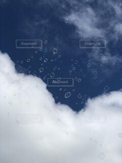 自然,空,夏,鳥,雨,雲,晴れ,青空,飛ぶ,シャボン玉,見上げる,くもり,日中,しゃぼん玉