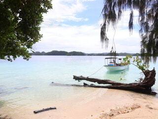 無人島の写真・画像素材[4155733]