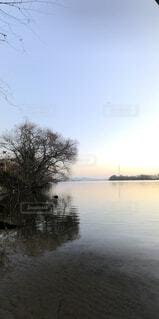 自然,風景,空,鳥,屋外,湖,水面,樹木
