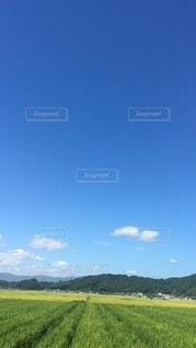 空,春,夏,雲,青い空,田舎,田んぼ,さんぽ,畑