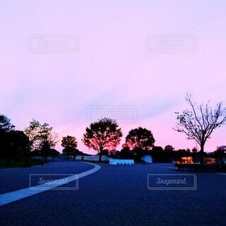 自然,空,屋外,雲,夕暮れ,道路,樹木,思い出