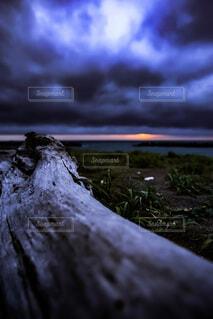 自然,風景,海,空,屋外,雲,水面,海岸,樹木,曇り空,流木,青色,曇天,草木,漂流物